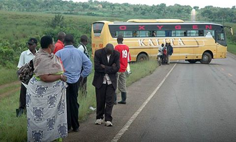 Kalita Transporters Limited Buses Grounded