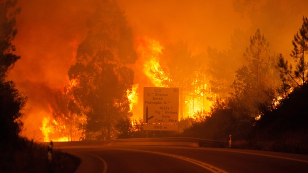 Forest fires kill 25 in central Portugal