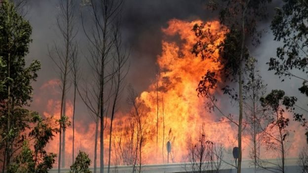 Portugal  declares three days of mourning for the 62 victims of forest fires.