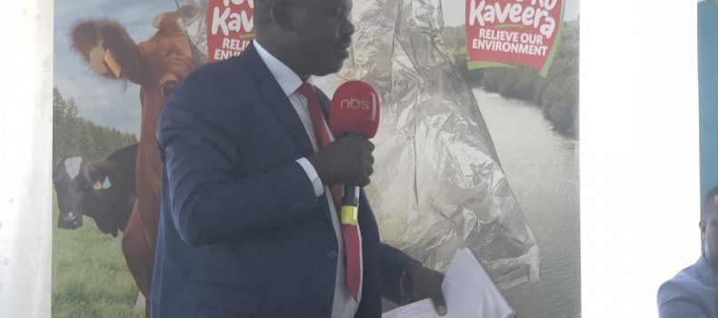 Manufacturers undermine implementation of ban on Kaveera