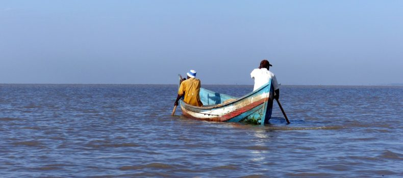 EAC states  act on overfishing  in Lake Victoria