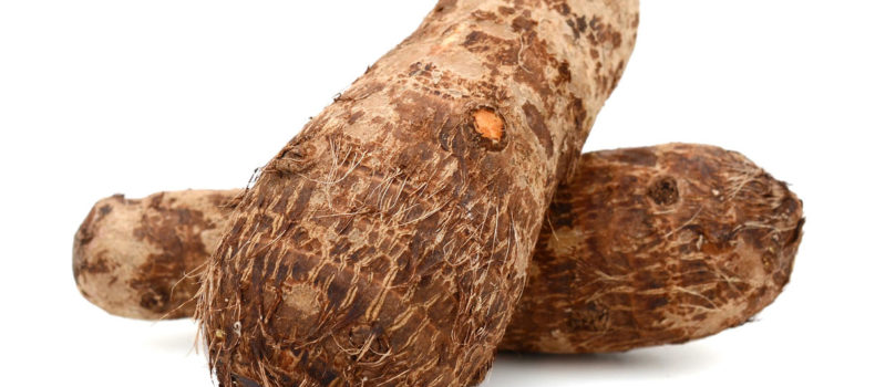 Pupil transformed into a yam after accepting a sweet from a stranger