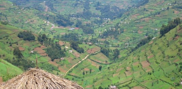 Impersonating 'Lawyer' Arrested in Kabale