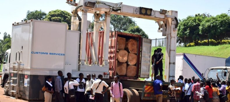 URA Intercepts 3 containers with Ivory, Pangolin Scales loaded as timber