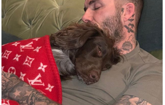 David Beckham enjoys afternoon nap with pet pooch wrapped in £4,600 Louis Vuitton blanket.