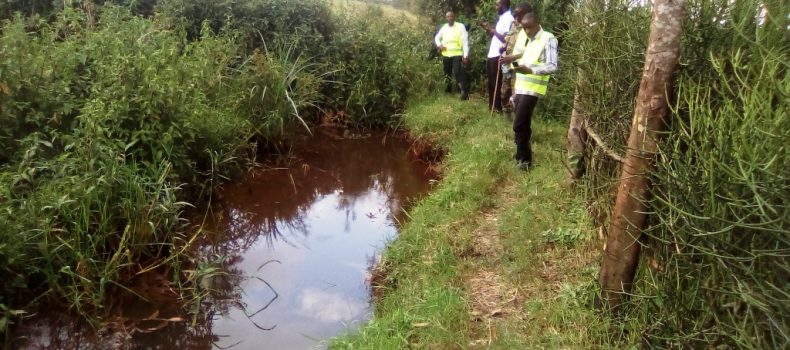 Ntungamo authorities fault NEMA on wetland encroachment
