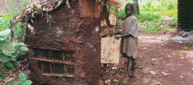 President Museveni rejects poverty statistics, believes that many Ugandans are still poor.