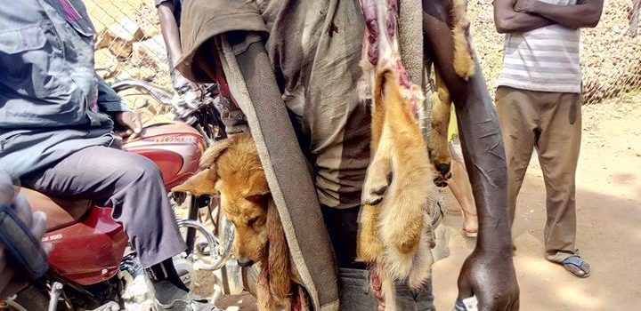 Identity of a man caught slaughtering dog for meat sell revealed