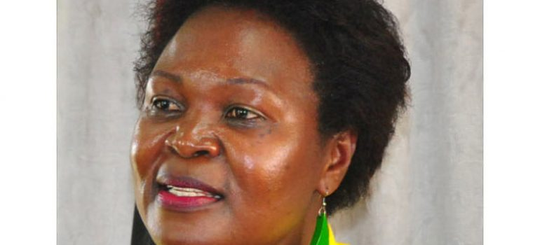 NRM MPs exchange words over committees