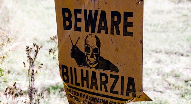 Researchers raise alarm over the high rates of bilharzia in Uganda.