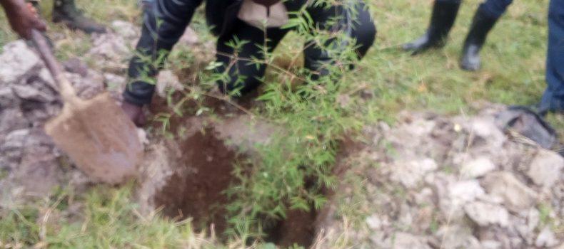 Bamuhumuza development group NGO launches Campaign to save River Rwizi