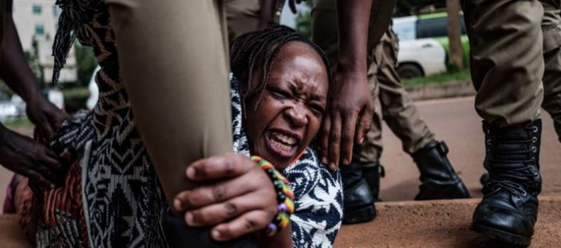 Dr. Stella Nyanzi  released on police bond.