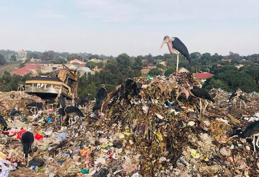 Kijungu residents decry stench from garbage site