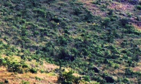 Two Moroto Prison Escapees Shot Dead, 60 Escapees were Positive for Covid19